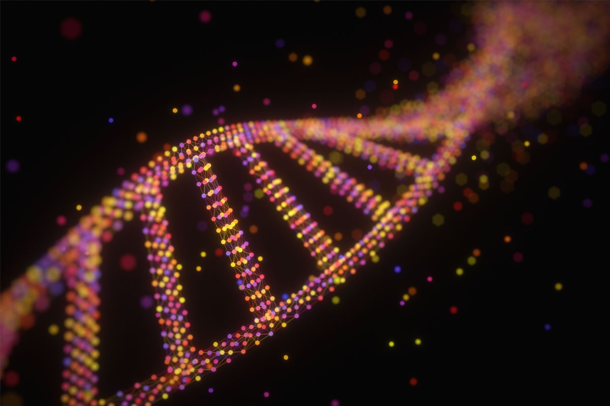 Hash Values are the DNA of Digital Evidence